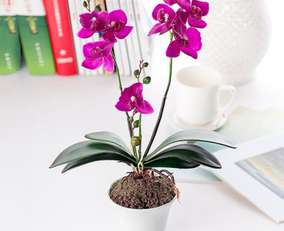 Home Office Decoration Ideas - potted flower