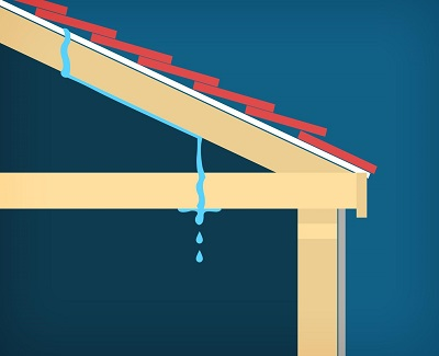 common roofing problems1
