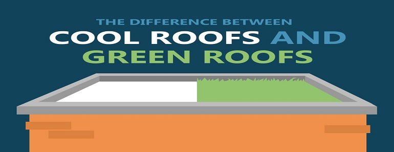 Difference Between Cool Roofs and Green Roofs