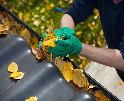 Tips on maintaining your roof3