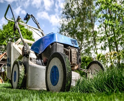 10 DIY Tips for Any Landscaping Project