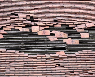 Common Causes of Roof Damage1