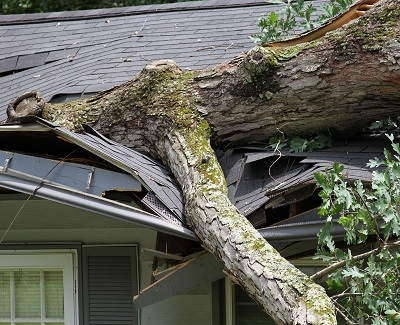 Know Thy Enemy The Most Common Causes Of Roof Damage
