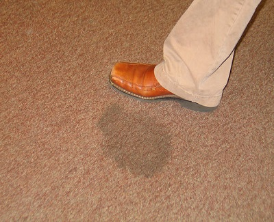 How to clean a carpet diy tips to save you some cash on for How to clean floor stains