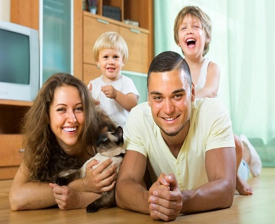 how-to-make-sure-your-home-is-pet-friendly