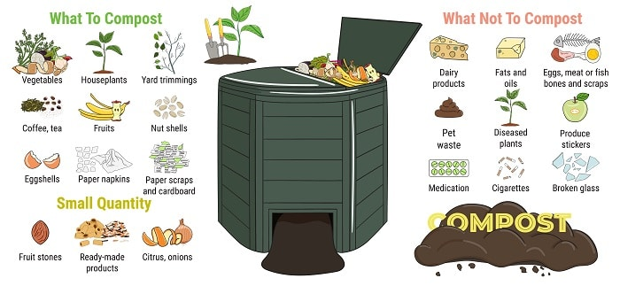 Infographic of garden composting bin with scraps. What to or not to compost. No food wasted. Recycling organic waste, compost. Sustainable living, zero waste concept