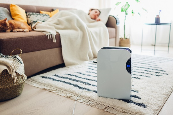 dehumidifier with touch panel