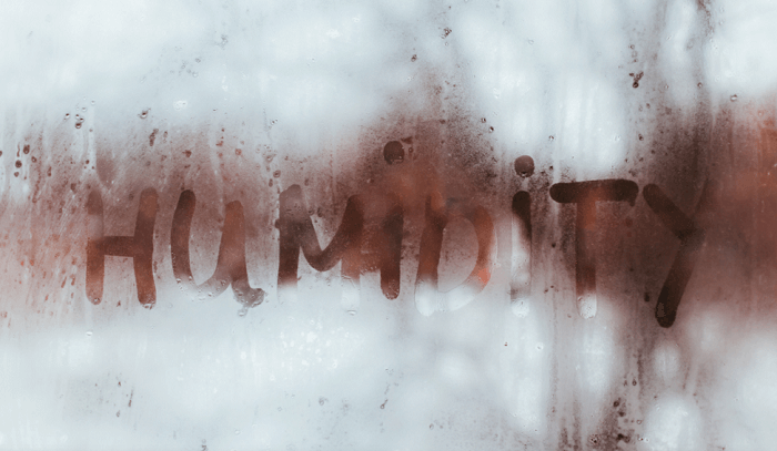 7 Tricks to Scale back Humidity in a Dwelling