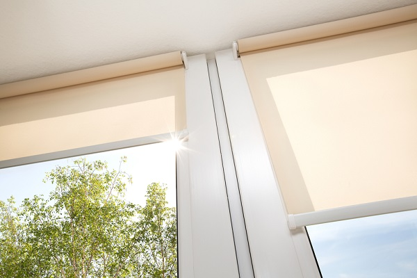 rollup window blinds